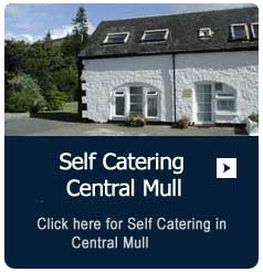 Self Catering in Central Mull