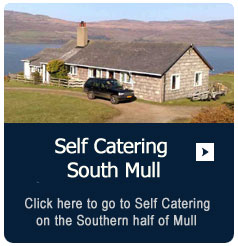 Self Catering on Southern Mull