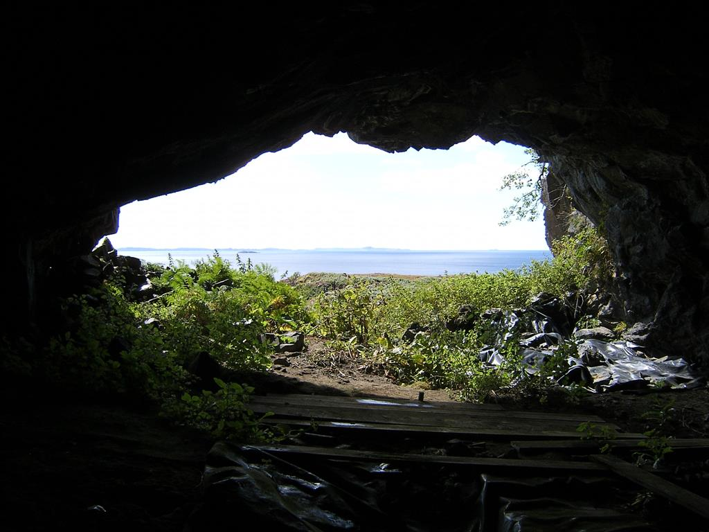 Livingston's Cave