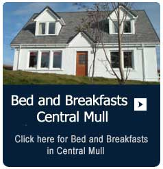 Bed and Breakfasts in Central Mull