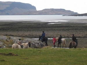 Pony trecking attractions