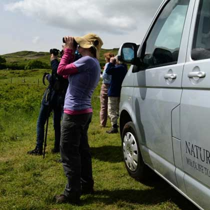 Wildlife watching tours