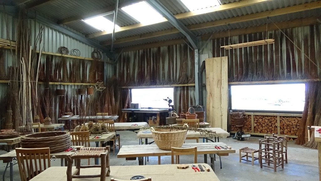 Mull Willow workshop 2020